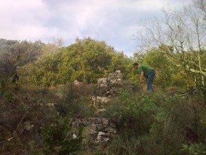 potager: un début dans jardin photo0240-300x225
